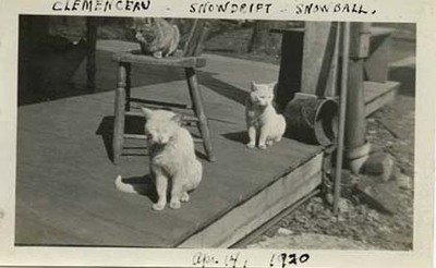 Clemenceau, Snowdrift, and Snowball