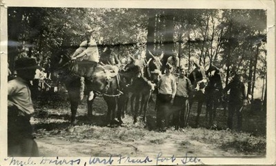 Mule Drivers, West Frankfort, Illinois
